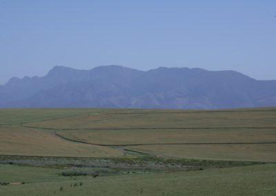 Farm environment 1 066 (Large)