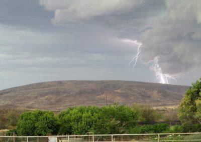 farm weather 094 (Large)